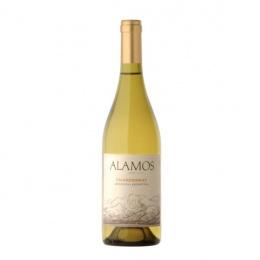 Vin Argentin Mendoza Blanc Catena Zapata Alamos Chardonnay 2016